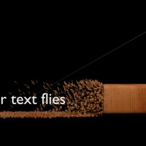 your_text_flies_your_text_flies_preview.jpg